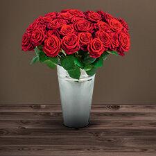 Interflora Rose du dernier adieu
