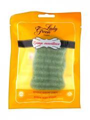 Lady Green Éponge Merveilleuse Konjac Corps Aloe Vera - Sachet 1 éponge