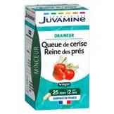 Juvamine Phyto Queue de Cerise Reine des Prés 50 Gélules - Boîte 50 gélules