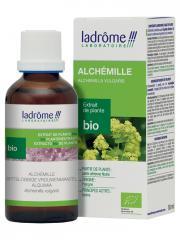 Ladrôme Extrait de Plante Bio Alchémille 50 ml - Flacon 50 ml