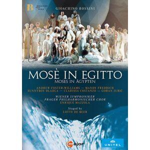 Moïse en Égypte DVD - DVD Zone 2 - Publicité