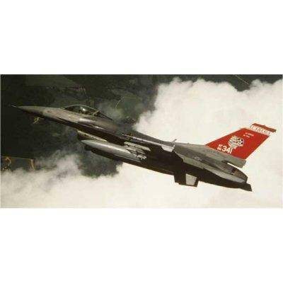 Hasegawa - Maquette avion: F-16C Alabama ANG Special - Maquette
