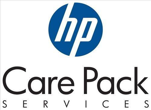 Non communiqué HP eCarePack ML310 G3 1 Year On Site Service within 4h 24x7 - Autres