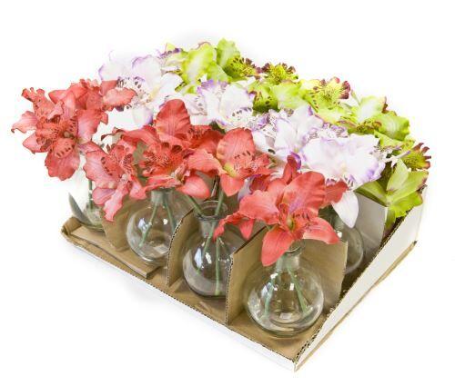 Visiodirect 12 Orchidées en pot verre 3 coloris assortis - 17 x 8 cm - Article de fête