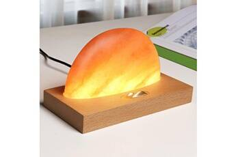 Lampe de sel de l'himalaya de méditation ambiante avec amplificateur de son de chargeur sans fil multicolore