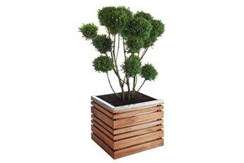 Jardipolys Bac à fleurs en bois carré lignz 60