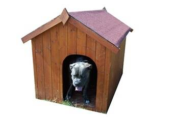habrita - niche à chien bi-pente pour gros chiens - 1,17 m²