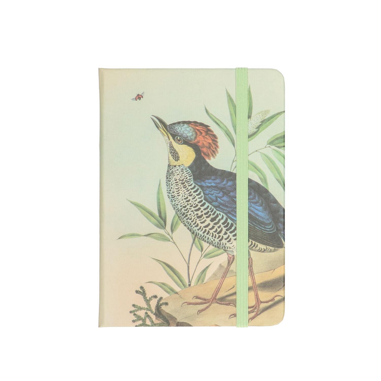 dille&kamille carnet de notes, oiseau musée, 15 x 10 cm