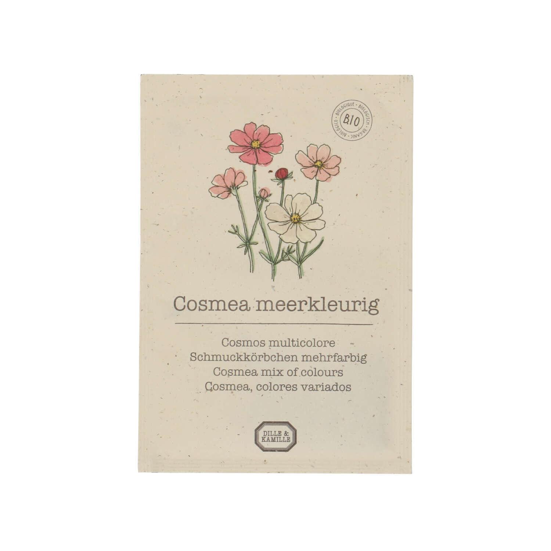 Dille&Kamille Graines de fleurs, biologique, Cosmos