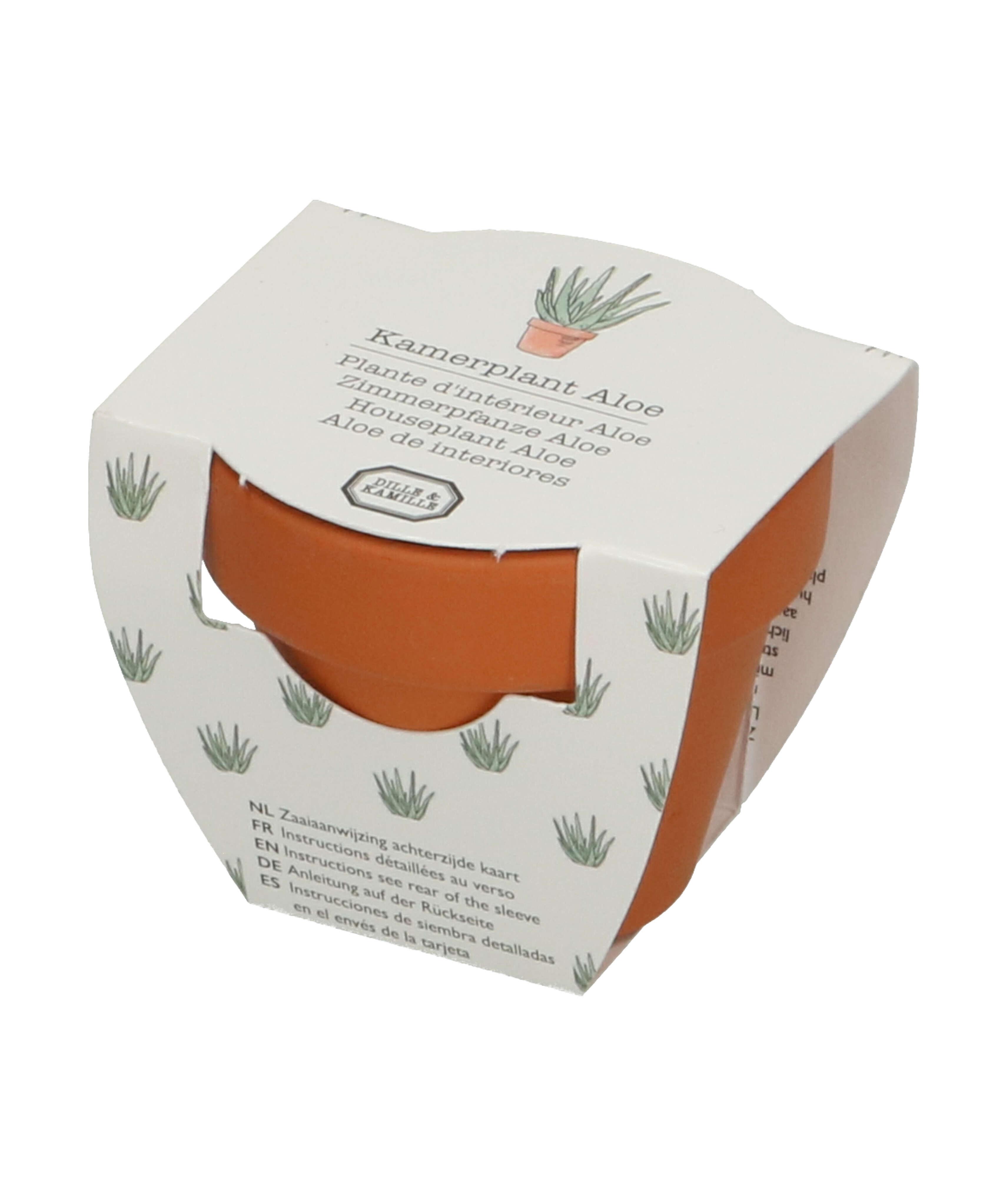 Dille&Kamille Aloe vera, graines et pot