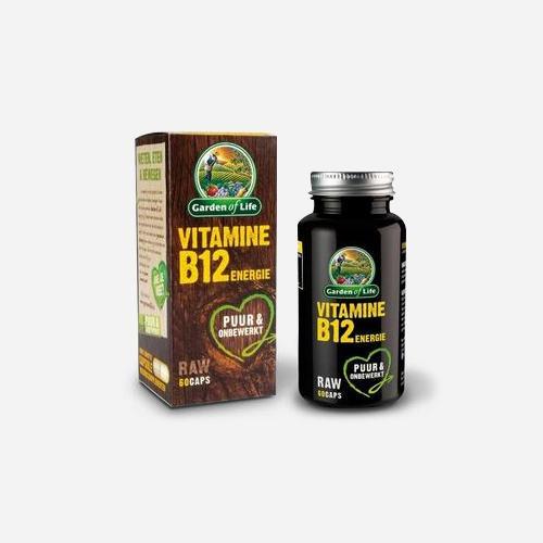 Garden of Life Vitamine B12 RAW Energie