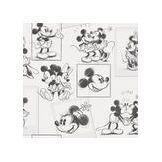 Disney Mickey et Minnie