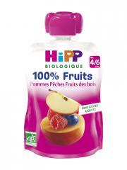 HiPP 100% Fruits Gourde Pommes Pêches Fruits des Bois dès 4/6 Mois Bio 90 g - Gourde 90 g