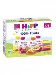 HiPP 100% Fruits dès 4/6 Mois Bio 8 Gourdes - Boîte 8 gourdes de 90 g