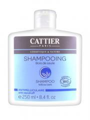 Cattier Shampoing Antipelliculaire Bois de Saule 250 ml - Flacon 250 ml
