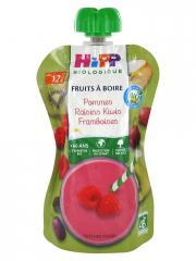 HiPP Fruits à Boire Pommes Raisins Kiwis Framboises dès 12 Mois Bio 120 ml - Gourde 120 ml