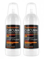Nutrivie Curcuma Gingembre et Poivre Noir Lot de 2 x 500 ml - Bouteille 2 x 500 ml