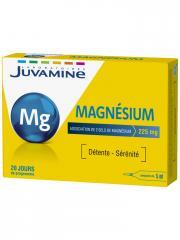 Juvamine Magnésium 20 Ampoules - Boîte 20 ampoules