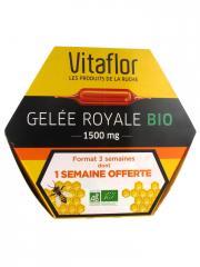 Vitaflor Gelée Royale 1500 mg Bio 20 Ampoules - Boîte 20 ampoules