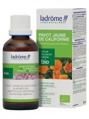 Ladrôme Extrait de Plante Fraîche Bio Pavot Jaune de Californie 50 ml - Flacon 50 ml