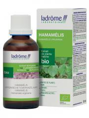 Ladrôme Extrait de Plante Fraîche Bio Hamamélis 50 ml - Flacon 50 ml