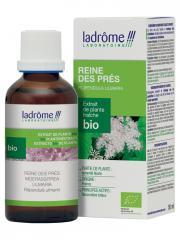 Ladrôme Extrait de Plante Fraîche Bio Reine des Prés 50 ml - Flacon 50 ml