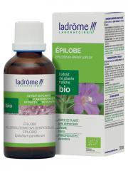 Ladrôme Extrait de Plante Fraîche Bio Epilobe 50 ml - Flacon 50 ml