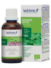 Ladrôme Extrait de Plante Fraîche Bio Grande Ortie 50 ml - Flacon 50 ml
