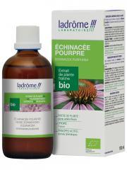 Ladrôme Extrait de Plante Fraîche Bio Echinacée Pourpre 100 ml - Flacon 100 ml