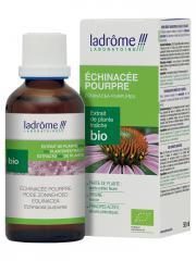 Ladrôme Extrait de Plante Fraîche Bio Echinacée Pourpre 50 ml - Flacon 50 ml