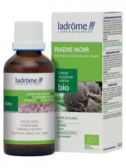 Ladrôme Extrait de Plante Fraîche Bio Radis Noir 50 ml - Flacon 50 ml