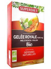 Super Diet Gelée Royale Miel d'Acacia Pollen Bio 20 Ampoules - Boîte 20 ampoules de 15 ml