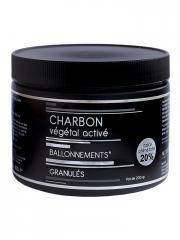 Nutrivie Charbon Végétal Activé Granulés 200 g - Boîte 200 g