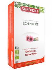 Super Diet Échinacée Bio 20 Ampoules - Boîte 20 Ampoules de 15 ml