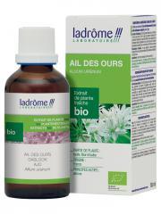 Ladrôme Extrait de Plante Fraîche Bio Ail des Ours 50 ml - Flacon 50 ml