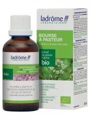 Ladrôme Extrait de Plante Fraîche Bio Bourse à Pasteur 50 ml - Flacon 50 ml