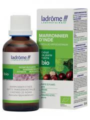 Ladrôme Extrait de Plante Fraîche Bio Marronnier d'Inde 50 ml - Flacon 50 ml