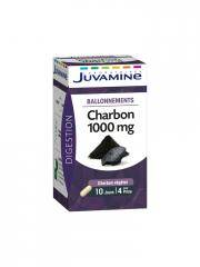 Juvamine Charbon 1000 mg 40 Gélules - Boîte 40 Gélules