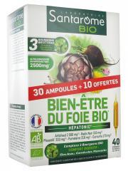 Santarome Bio Bien-Être du Foie Bio 30 Ampoules + 10 Ampoules Offertes - Boîte 40 Ampoules