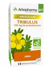 Arkopharma Arkogélules Tribulus Bio 40 Gélules - Flacon 40 Gélules