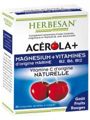 Herbesan Acérola + Magnésium + Vitamines 30 Comprimés - Boîte 30 Comprimés