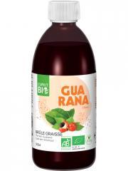 Esprit Bio Thé Vert et Guarana à Boire Brûle-Graisse 500 ml - Bouteille 500 ml