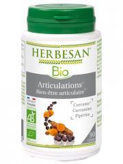 Herbesan Bio Articulations Bien-être Articulaire 90 Gélules - Pot 90 Gélules