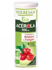 Herbesan Bio Acérola 500 mg 12 Comprimés Sécables - Tube 12 comprimés