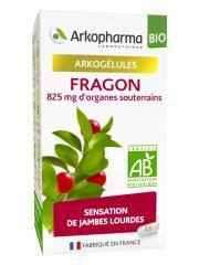 Arkopharma Arkogélules Fragon Bio 45 Gélules - Pot 45 Gélules