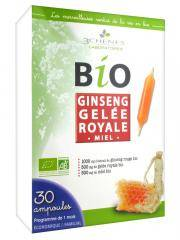 Les 3 Chênes Bio Ginseng Gelée Royale 30 Ampoules - Boîte 30 ampoules de 10 ml