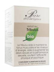 Phytalessence Pure Tribulus Bio 30 Gélules - Pot 30 gélules