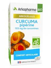 Arkopharma Arkogélules Curcuma Pipérine Bio 40 Gélules - Pot 40 gélules