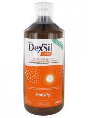 Dexsil Forte Articulations + MSM Glucosamine Chondroïtine Solution Buvable 1 L - Flacon 1000 ml