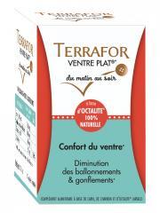 Laboratoire Source Origine Terrafor Ventre Plat 60 Gélules Végétales - Pot 60 gélules végétales